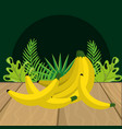 fresh fruits bananas cartoon vector image