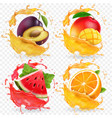 orange watermelon plum and mango juice vector image vector image