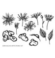 set hand drawn black and white jerusalem vector image vector image