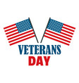 usa flag veterans day logo flat style vector image
