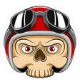 dead skull head using red helmet and vector image