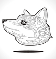 fox outline vector image vector image
