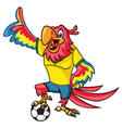 Soccer Parrot vector image vector image