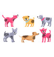 happy dogs of different breeds vector image