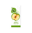 juice fruit label with half of green apple and vector image vector image