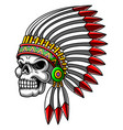 scary silver skull head using indian hat vector image