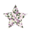 Star Mosaic Icon vector image vector image