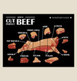 poster butcher diagram and scheme - cow cut of vector image