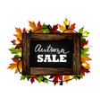 autumn sale autumn leaves are drawn with chalk on vector image