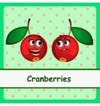 Cranberry funny characters on green background vector image vector image