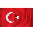 Flag of Turkey vector image