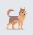 husky cute dog icon furry human friends home vector image vector image