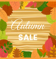 Autumn leaves on a wooden table autumn sale