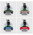 baseball club logo design artwork of baseball vector image vector image