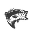 bass fish icon isolated on white background vector image vector image