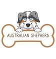 cute cartoon australian shepherd on collar dog tag