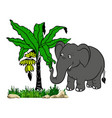 drawing banana tree with elephant artwork vector image vector image