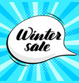 inspirational lettering inscription winter sale vector image