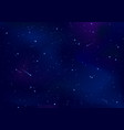 night starry sky vector image vector image