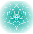schematic picture of flower lotus in blossom vector image vector image