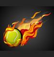shooting tennis ball with flame on black vector image vector image