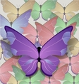 brigt lilac butterfly vector image vector image