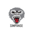 chimpanzee logo design vector image vector image