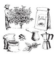 coffee production hand drawn farmer picking beans vector image vector image