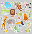 cute set of stickers of safari animals and flowers vector image vector image