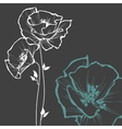 Floral card over dark background vector image vector image
