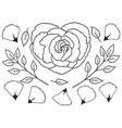 floral collection hand drawn elements flower vector image vector image