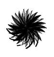 grunge spiralled stamp vector image vector image
