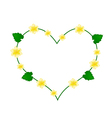 Indian Mallow Flower in A Heart Shape vector image vector image