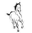 Line sketch of a running horse vector image