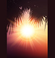 palm tree leaves on summer background vector image vector image