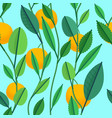 seamless pattern with green leaves and oranges vector image vector image
