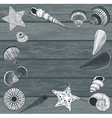 Seashells on a Wooden Background vector image vector image