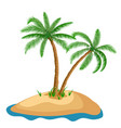 palm tree in island on isolated background vector image