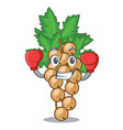 boxing white currant isolated with the cartoons vector image