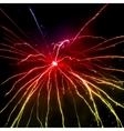 Fireworks in the night sky vector image
