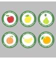FruitySet3 vector image vector image
