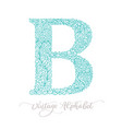 hand drawn b letter calligraphy vintage logo vector image