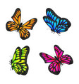 set real colorful butterfly flying isolated vector image