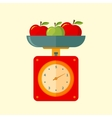 kitchen scales vector image