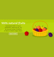 100 percent natural fruits banner horizontal vector image