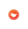 bird dove open wings flying logo design pigeon vector image