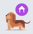 cute beagle dog dreaming about doghouse furry vector image vector image