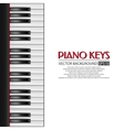 Piano keys background vector image vector image