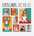 cats and dogs cards animals pets set vector image vector image