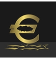 Cracked Euro sign vector image vector image